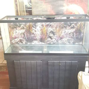 55 gallon fish tank w/ stand for Sale in Tampa, FL