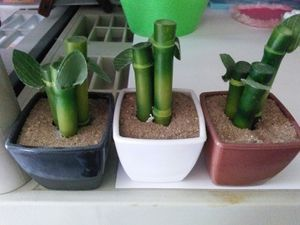 Mini fake plants for Sale in Kissimmee, FL