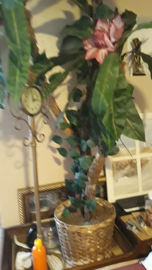 Beautiful tall fake plant for Sale in Saint Petersburg, FL