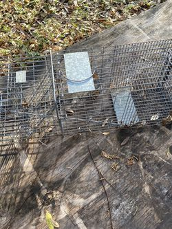 Animal Trap for Sale in Winter Park,  FL