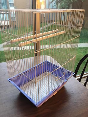 Bird Cage for Sale in Kent, OH