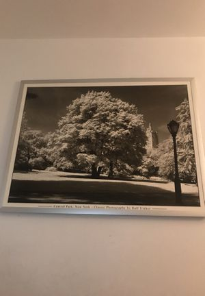 Central Park NYC Art Photo for Sale in Manassas, VA