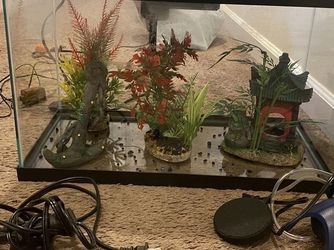 10 Gallon Fish Tank And Accessories for Sale in Kent,  WA