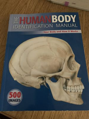 Various anatomy study aides for Sale in Scottsdale, AZ
