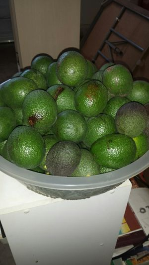 Aguacates orgánicos for Sale in Ontario, CA