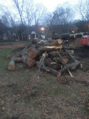 Free wood for Sale in Durham, NC