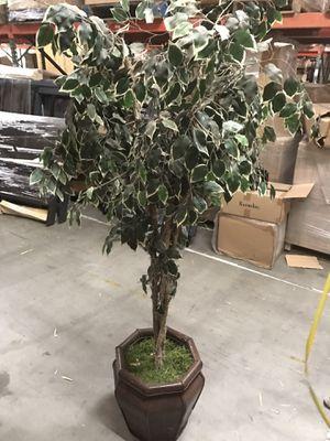 Decorative Fake Potted Plant Decor for Sale in El Monte, CA