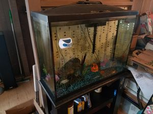 Fish Tank and Stand for Sale in Pearl City, HI