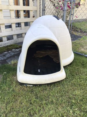 Dog Igloo for Sale in Montesano, WA