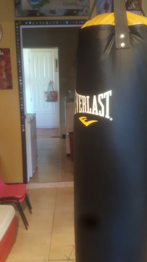 Everlast punching bag and gloves for Sale in El Paso, TX