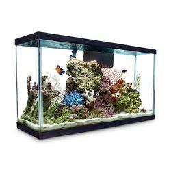 Aquarium Fish Tank Lot 29 Gal. for Sale in Everett,  WA
