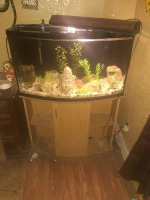 50 gallon fish tank for Sale in Fort Worth, TX