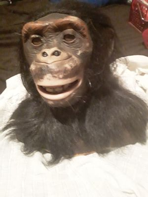Chimpanzee robotic head for Sale in Tulsa, OK
