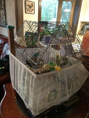 Cage for birds, Parakeets for Sale in Derwood, MD
