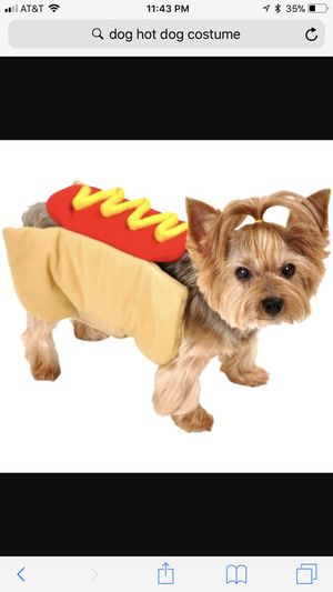 Dog costume for Sale in Blacklick, OH