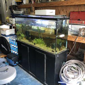 75 Gallon Aquarium for Sale in Riverside, CA
