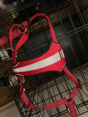 Kong chest collar for Sale in Tucson, AZ