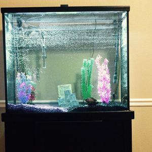 80 gallon aquarium for Sale in Clovis, CA