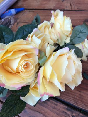 Yellow roses for Sale in Los Angeles, CA