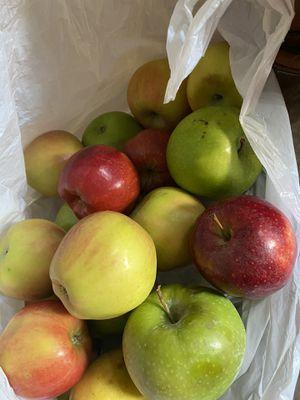 Free apples for Sale in Phoenix, AZ