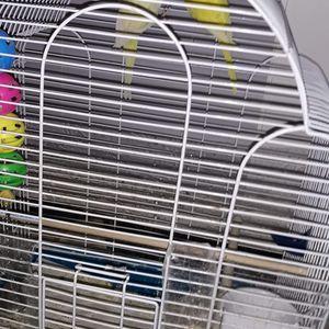 Bird Cage for Sale in Cicero, IL