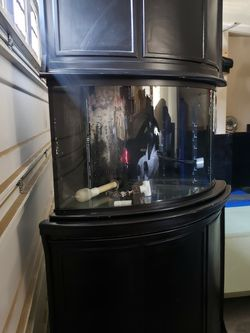 54 Gallon Corner Aquarium With Custom Stand & Canopy With Light Supplies Fish Tank for Sale in Clovis,  CA