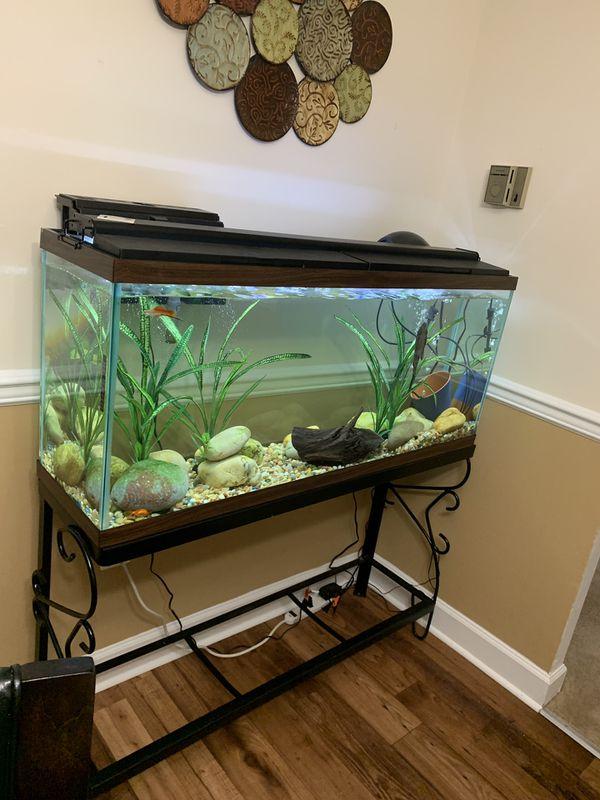 75 gallons fish tank