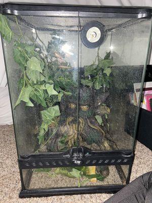 Tropical terrarium cage for Sale in Phoenix, AZ