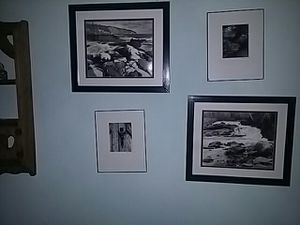 Black and white pictures for Sale in Brainerd, MN
