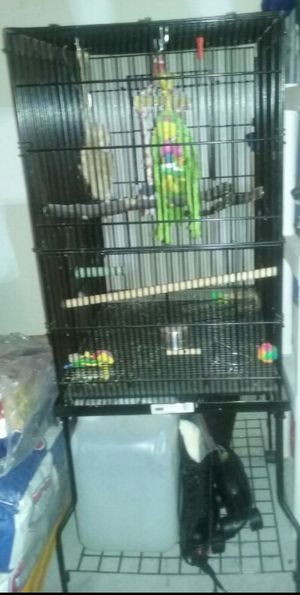 Midwest parrot cage on stand with wheels! for Sale in Brentwood, NC
