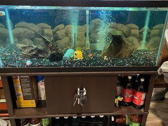 75 Gallon Fish Tank 🐟 for Sale in Lakeland,  FL