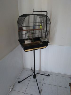 🐦 cage. For $50 for Sale in Lakeland, FL