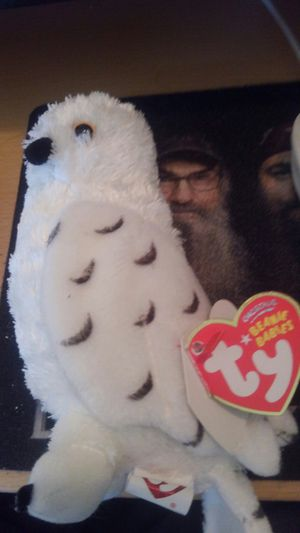 Beanie Babies White Owl for Sale in Neenah, WI