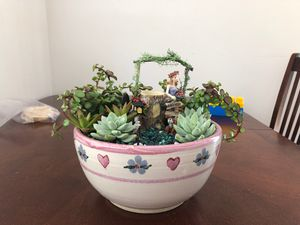 Succulent Fairy Garden for Sale in Everett, WA