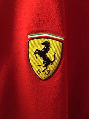 Ferrari puma wind breaker for Sale in Denver, CO