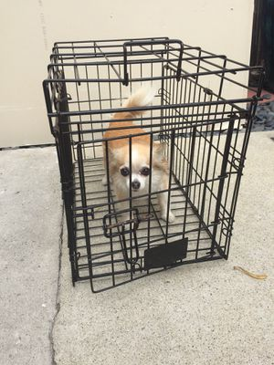 Small Wire Dog Training Crate for Sale in Playa del Rey, CA