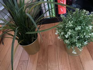 Fake House plants for Sale in Chantilly, VA