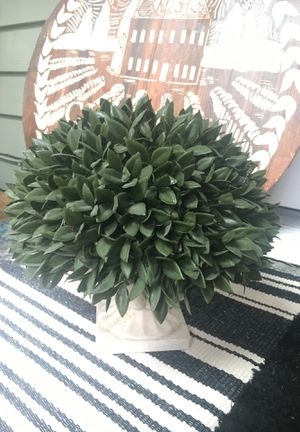 Decor / fake plant / French country for Sale in Issaquah, WA