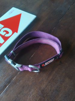 Kong dog collar for Sale in Pittman Center,  TN