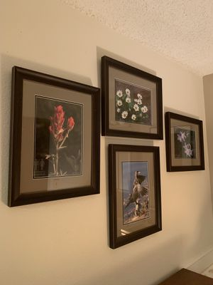 Quality Custom Frame photography for Sale in Westminster, CO