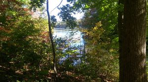 1.6 Acre Waterfront Lot on Lake Mayo in Roxboro N.C. ... 160' of lake frontage. for Sale in Durham, NC