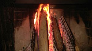 The Best FIREWOOD for Sale in Grover Beach, CA