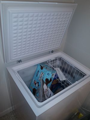 Freezzer for Sale in Tampa, FL