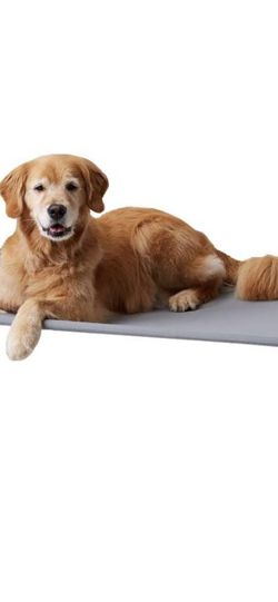 Large Dog Bed for Sale in Cape Coral,  FL