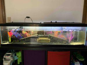 Crayfish tank for Sale in Federal Way, WA