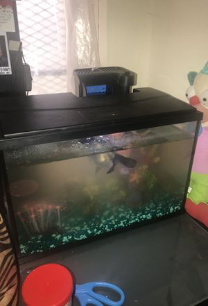 Topfin 10 gallon fish tank for Sale in Miami, FL