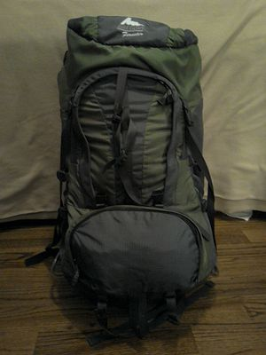 Gregory Forester Backpack- men's L Like new! Excellent condition! for Sale in Nashville, TN