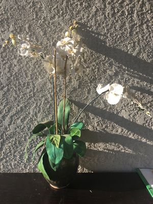 Artificial Orchid Plant for Sale in Fresno, CA