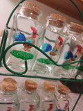 Seasoning jars for Sale in Sudbury, MA