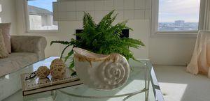 Super large, cool plant or ceramic pot/dish. for Sale in Newport Beach, CA
